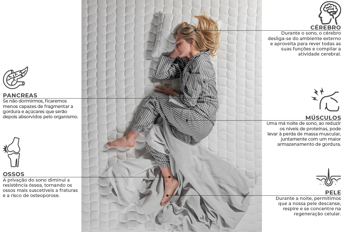 O que acontece quando dormimos colunex o que acontece durante o sono pt